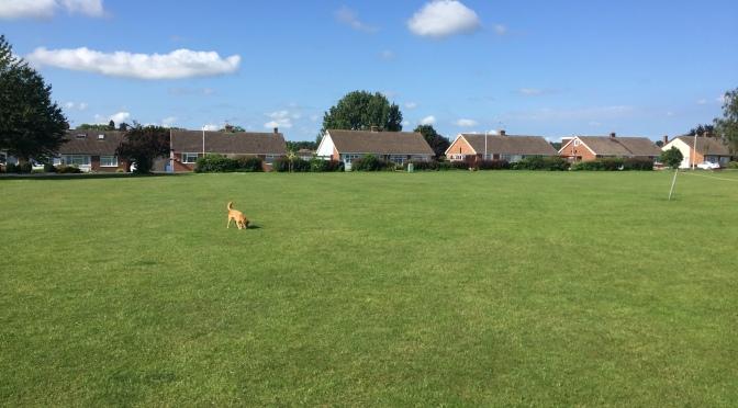 How should Faversham grow?